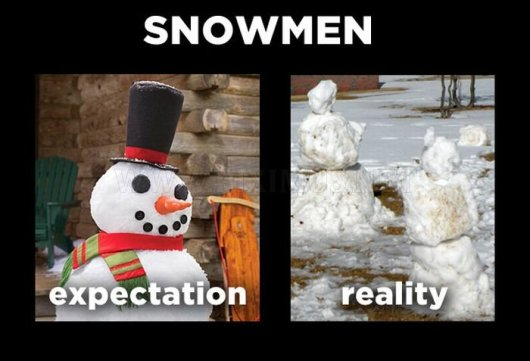 holiday-expectations-vs-reality-5[1]